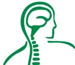 متخصص و جراح مغز و اعصاب ، دیسک و ستون فقرات