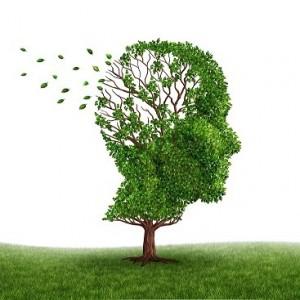 کشف عوامل جدید ژنتیکی ابتلا به آلزایمر