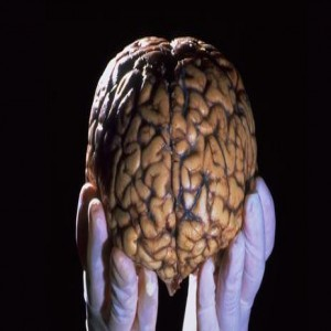مردی با نصف مغز و یک زندگی عادی